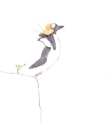 Kort, Pingvinen som flyr, Tails, Store
