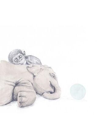 Kort, Elefanten og apekatten, Tails, Store