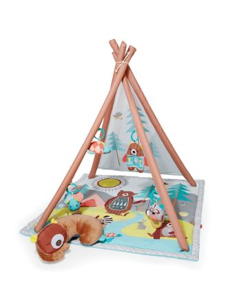 Babygym, Camping Cubs, Skip Hop